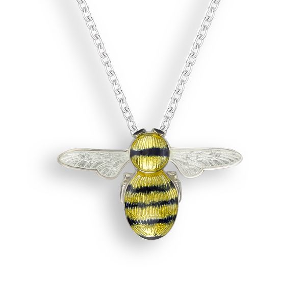 Black and yellow enamelled silver bee pendant on necklet from AA Thornton Kettering Northampton
